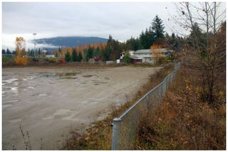 Photo 9: 480 Southeast 30 Street in Salmon Arm: SE Vacant Land for sale : MLS®# 10171761