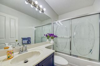 Photo 30: 23 Citadel Meadow Grove NW in Calgary: Citadel Detached for sale : MLS®# A1149022