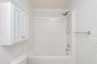 Photo 33: 22 13403 CUMBERLAND Road in Edmonton: Zone 27 House Half Duplex for sale : MLS®# E4248580