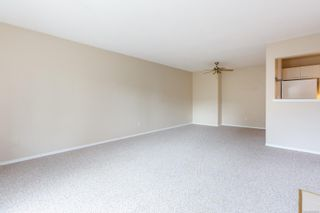 Photo 10: 207 1270 Johnson St in : Vi Downtown Condo for sale (Victoria)  : MLS®# 869556