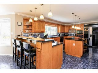 Photo 8: 21980 100TH Avenue in Langley: Fort Langley House for sale : MLS®# F1448299