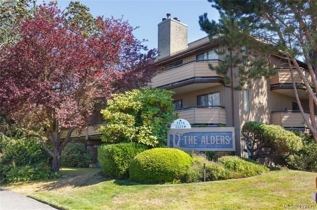 Main Photo: 204 3215 Alder St in VICTORIA: SE Quadra Condo for sale (Saanich East)  : MLS®# 841533