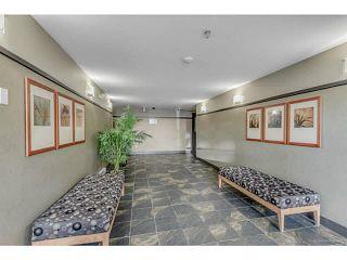 "Photo 4: 308 285 NEWPORT Drive in Port Moody: North Shore Pt Moody Condo for sale in ""THE BELCARRA @ NEWPORT VILLAGE"" : MLS®# V1134307"