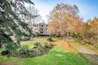 "Photo 17: 202 8511 ACKROYD Road in Richmond: Brighouse Condo for sale in ""Lexington Square"" : MLS®# R2322911"