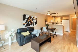 """Photo 15: 227 3122 ST JOHNS Street in Port Moody: Port Moody Centre Condo for sale in """"SONRISA"""" : MLS®# R2620860"""