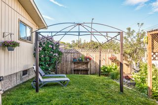 Photo 46: 459 Queen Charlotte Road SE in Calgary: Queensland Detached for sale : MLS®# A1122590