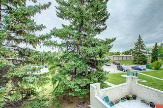 Photo 35: 203 3500 Varsity Drive NW in Calgary: Varsity Row/Townhouse for sale : MLS®# A1146512