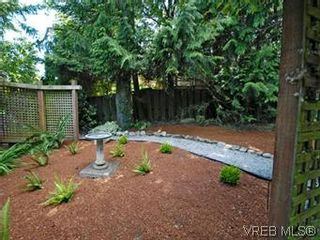 Photo 20: 4090 Torquay Dr in VICTORIA: SE Mt Doug House for sale (Saanich East)  : MLS®# 589552