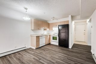 Photo 2: 3209 1620 70 Street SE in Calgary: Applewood Park Apartment for sale : MLS®# A1116068