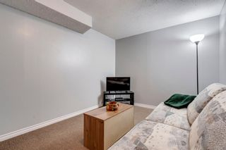 Photo 25: 704 43 Street SE in Calgary: Forest Heights Semi Detached for sale : MLS®# A1096355
