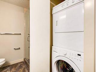 Photo 29: 205 33 6A Street NE in Calgary: Bridgeland/Riverside Apartment for sale : MLS®# A1127361