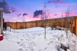 Photo 40: 207 Kinniburgh Road: Chestermere Semi Detached for sale : MLS®# A1057912