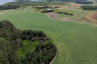 Photo 8: 51318 RANGE ROAD 210 A: Rural Strathcona County Rural Land/Vacant Lot for sale : MLS®# E4208934