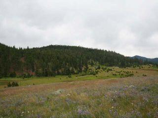 Photo 21: 1328 AC SCOTT ROAD in : Valleyview Lots/Acreage for sale (Kamloops)  : MLS®# 135387