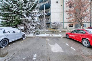 Photo 40: 110 11 Dover Point SE in Calgary: Dover Apartment for sale : MLS®# A1096781