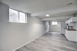 Photo 28: 125 Martin Crossing Way NE in Calgary: Martindale Detached for sale : MLS®# A1117309