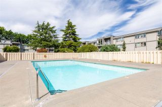 "Photo 10: 102 3391 SPRINGFIELD Drive in Richmond: Steveston North Condo for sale in ""CORAL COURT AT IMPERIAL BY THE SEA"" : MLS®# R2481877"