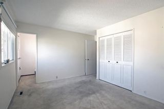 Photo 22: 132 Mardale Crescent NE in Calgary: Marlborough Detached for sale : MLS®# A1146772