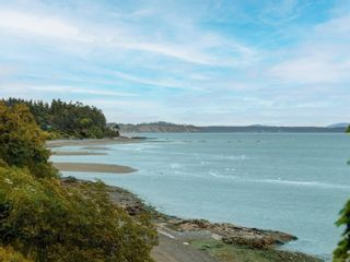 Photo 21: 5287 Parker Ave in : SE Cordova Bay House for sale (Saanich East)  : MLS®# 878829