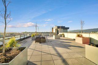 Photo 20: 201 22638 119 AVENUE in Maple Ridge: East Central Condo for sale : MLS®# R2521537