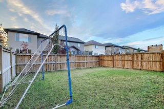 Photo 45: 1100 Brightoncrest Green SE in Calgary: New Brighton Detached for sale : MLS®# A1060195