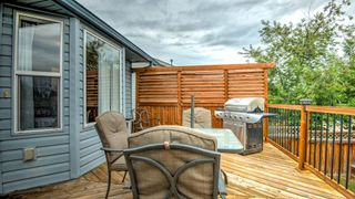 Photo 38: 339 STRATHAVEN Drive: Strathmore Detached for sale : MLS®# A1117451
