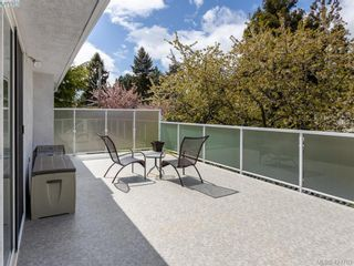 Photo 17: 3997 San Mateo Pl in VICTORIA: SE Gordon Head House for sale (Saanich East)  : MLS®# 838777