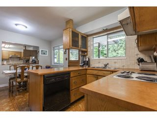 Photo 11: 838 DUNDONALD Drive in Port Moody: Glenayre House for sale : MLS®# R2554927