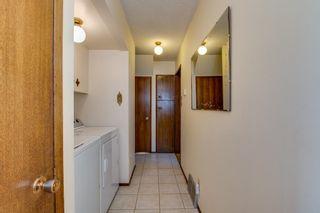 Photo 25: 10424 39A Avenue in Edmonton: Zone 16 House for sale : MLS®# E4264425