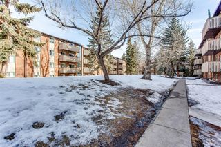 Photo 19: 932 11620 Elbow Drive SW in Calgary: Canyon Meadows Apartment for sale : MLS®# A1077095