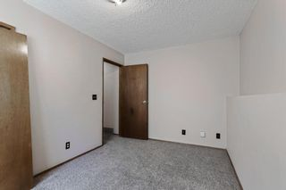 Photo 25: 211 Templewood Road NE in Calgary: Temple Detached for sale : MLS®# A1124451