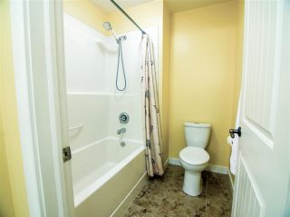 Photo 42: 4101 TRIOMPHE Point: Beaumont House for sale : MLS®# E4222816