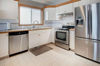 Photo 7: 66 Jensen Heights Place NE: Airdrie Detached for sale : MLS®# A1065376