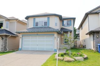 Photo 1: 15 Citadel Meadow Grove NW in Calgary: Citadel Detached for sale : MLS®# A1129427