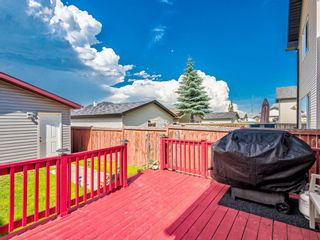 Photo 39: 90 CRAMOND Circle SE in Calgary: Cranston Detached for sale : MLS®# A1017241