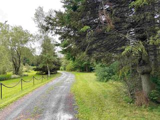 Photo 28: 510 Mount William Road in Mount William: 108-Rural Pictou County Residential for sale (Northern Region)  : MLS®# 202120400