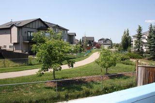 Photo 31: 69 Canals Circle SW: Airdrie Detached for sale : MLS®# A1128486