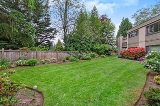 """Photo 19: 1213 PLATEAU Drive in North Vancouver: Pemberton Heights Townhouse for sale in """"Plateau Village"""" : MLS®# R2455455"""