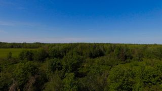 Photo 11: River John Road in Sundridge: 108-Rural Pictou County Vacant Land for sale (Northern Region)  : MLS®# 202115166