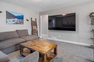 Photo 21: 383 STOUT Lane: Leduc House for sale : MLS®# E4251194