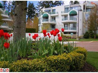 Photo 1: 402 1725 MARTIN Drive in Surrey: Sunnyside Park Surrey Home for sale ()  : MLS®# F1208153