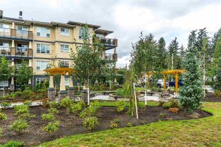 """Photo 22: 104 2565 CAMPBELL Avenue in Abbotsford: Central Abbotsford Condo for sale in """"ABACUS"""" : MLS®# R2591043"""