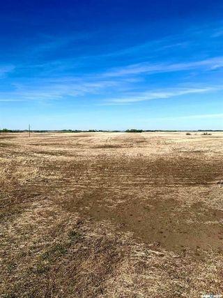 Photo 3: RM of Corman Park 9.99 Acres in Corman Park: Lot/Land for sale (Corman Park Rm No. 344)  : MLS®# SK870172