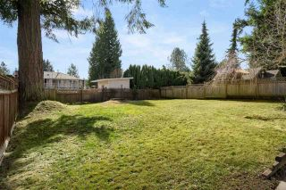 Photo 23: 11940 84A Avenue in Delta: Annieville House for sale (N. Delta)  : MLS®# R2569046