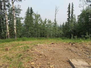 Photo 5: 6059 NORMAN ROAD in 100 Mile House: Vacant Land for sale : MLS®# R2602531