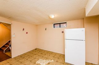 Photo 24: 48 Whitworth Way NE in Calgary: Whitehorn Detached for sale : MLS®# A1147094