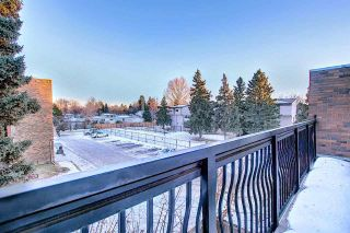 Photo 36: 201 7825 159 Street in Edmonton: Zone 22 Condo for sale : MLS®# E4225328