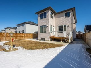 Photo 31: 39 Rainbow Falls Boulevard: Chestermere Detached for sale : MLS®# A1080652