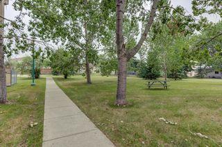 Photo 40: 316 9820 165 Street NW in Edmonton: Zone 22 Condo for sale : MLS®# E4255876