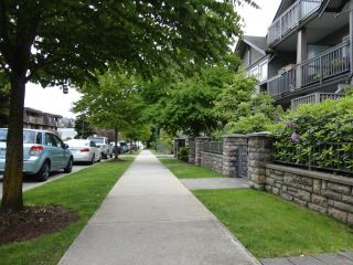 Photo 10: # 102 4438 ALBERT ST in Burnaby: Vancouver Heights Condo for sale (Burnaby North)  : MLS®# V1068524